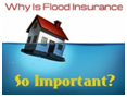 Do You Need Flood Insurance