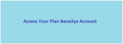 Your Plan Benesys Account Login